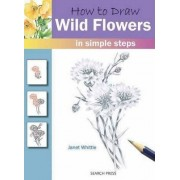 How to Draw Wild Flowers by Janet Whittle