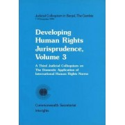 Developing Human Rights Jurisprudence: Third Judicial Colloquium on the Domestic Application of International Human Rights Norms Vol 3 by Commonwealth Secretariat