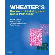 Wheater's Review of Histology and Basic Pathology by Kate M Baldwin