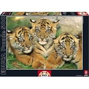 Puzzles Educa - Pequeños tigres, puzzle de 500 piezas (15965)