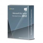 Microsoft SQL Server 2014 Standard 10 CAL engl. Lizenz Download