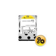HDD 900GB SAS 2.5 WDXE 10000rpm 64MB for servers (5 years warranty)