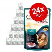 Animonda Carny Exotic в бонус опаковка 24 x 85 г - щраус
