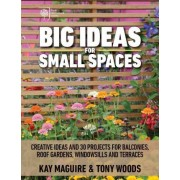 Big Ideas for Small Spaces by Kay Maguire