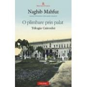 Palatul dorintei. Trilogia Cairoului 1