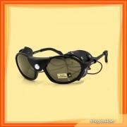 Arctica S-42 P Sunglasses
