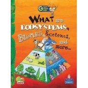 What are Ecosystems, Biomes, Ecotones, and More...: Key stage 2 by Richa Sharma