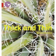 Thick and Thin by Alison Hawes