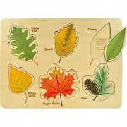 Lift and Learn Leaf Puzzle - Made in USA
