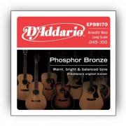 D'Addario - 4er Phosphor Bronze 45-100 Acoustic Bass 45-65-80-100