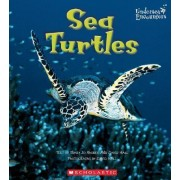 Sea Turtles by Mary Jo Rhodes