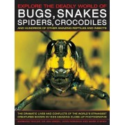 Explore the Deadly World of Bugs, Snakes, Spiders, Crocodiles by Barbara Taylor