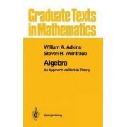 Algebra by William A. Adkins