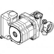 Pompa GB072 V2 3PK/43