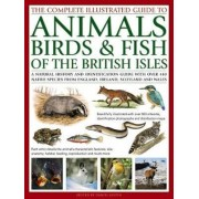The Complete Illustrated Guide to Animals, Birds & Fish of the British Isles by Daniel Gilpin