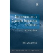 Reconstructing a Christian Theology of Nature by Anna Case-Winters