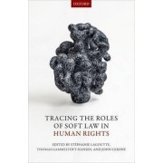 Tracing the Roles of Soft Law in Human Rights by Stephanie Lagoutte