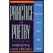 The Practice of Poetry by Robin Behn