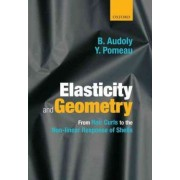 Elasticity and Geometry by Basile Audoly