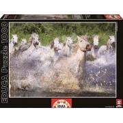 Educa Puzzle Genuine White Camargue Horses 1000 de piese 15988 colorat