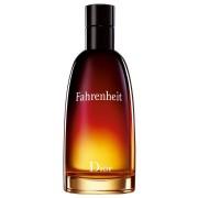 Christian Dior Fahrenheit Eau de Toilette (EdT) 100 ml