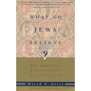 What Do Jews Believe by David S. Ariel
