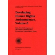 Developing Human Rights Jurisprudence by Commonwealth Secretariat