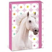 Lovas füzetbox - A4 vagy A5 méretben - fehér lovas