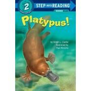 Platypus! by Paul Mirocha