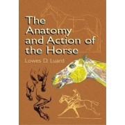 The Anatomy and Action of the Horse by Lowes Dalbiac Luard