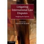 Litigating International Law Disputes by Natalie Klein