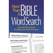 More Than a Bible Word Search by Patricia Mitchell