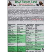 Bach Flower Card for Dogs, Cats, Small Animals and Horses - Behaviours and Mental States by Verlag Hawelka