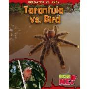 Tarantula vs. Bird by Mary Meinking