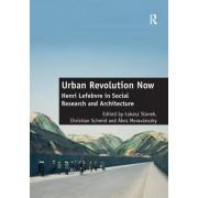 Urban Revolution Now by Christian Schmid