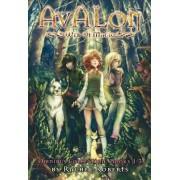 Avalon: Web of Magic Omnibus 1 by Rachel Roberts