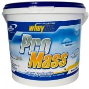 Pro Nutrition Pro Mass alap tömegnövelő 6000 g