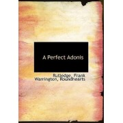 A Perfect Adonis by Rachel Rutledge