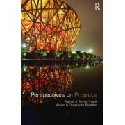 Perspectives on Projects by Rodney J. Turner