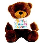 Brown 2 feet Big Teddy Bear wearing a Best Friends Forever T-shirt