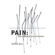 Pain by Patrick Wall