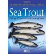 Sea Trout by Graeme Harris