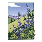 Lupines (Unboxed)
