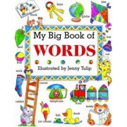 My Big Book of Words by Isabel Clark