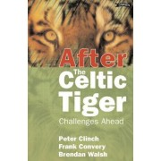 After the Celtic Tiger by Peter Clinch