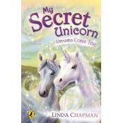 Dreams Come True by Linda Chapman