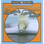 What Polar Animals Eat/Que Comen Los Animales de Los Polos? by Joanne Mattern