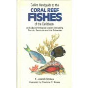 Handguide to the Coral Reef Fishes of the Caribbean by F.J. Stokes