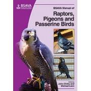 BSAVA Manual of Raptors, Pigeons and Passerine Birds by John Chitty