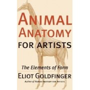 Animal Anatomy for Artists by Artist/Anatomist Instructor Eliot Goldfinger